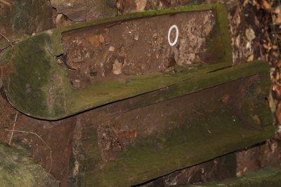 Ancient burial site at Danum Valley