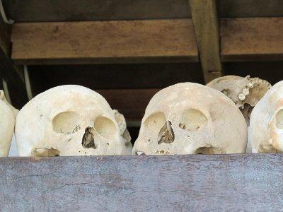 Skulls in Killing Fields.