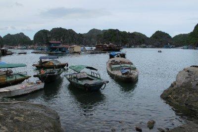 Bay at Cat Ba island
