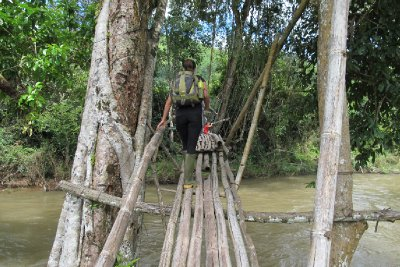 Scary bamboo bridge
