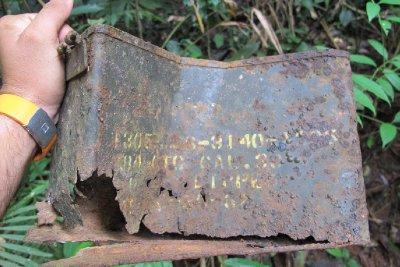 Old rusty USA ammunition box on the forest floor (Vietnam war era)