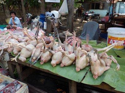 Fristende høner?
