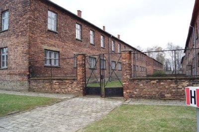 Auschwitz11.jpg