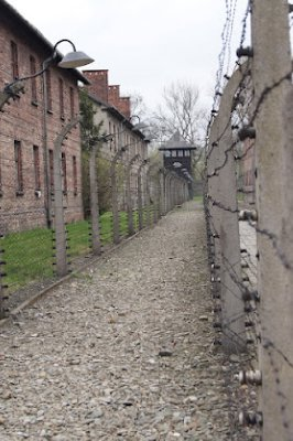 Auschwitz15.jpg