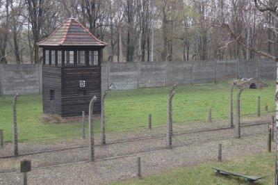 Auschwitz5.jpg