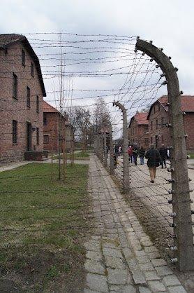 large_Auschwitz13.jpg