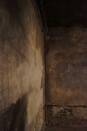 large_Auschwitz20.jpg