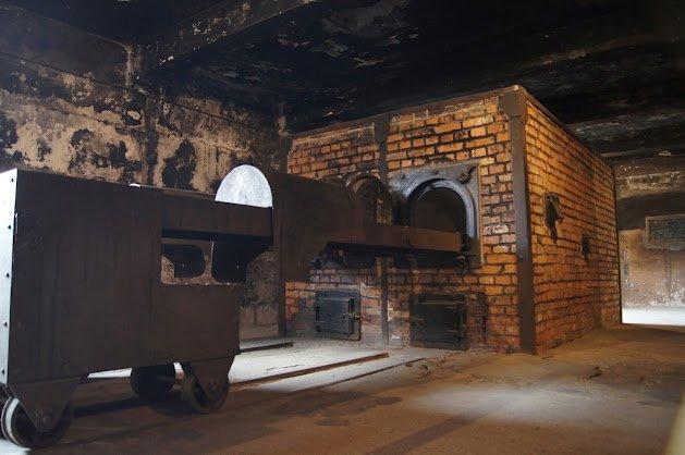 large_Auschwitz22.jpg