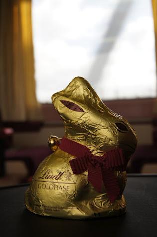 large_Bunny.jpg
