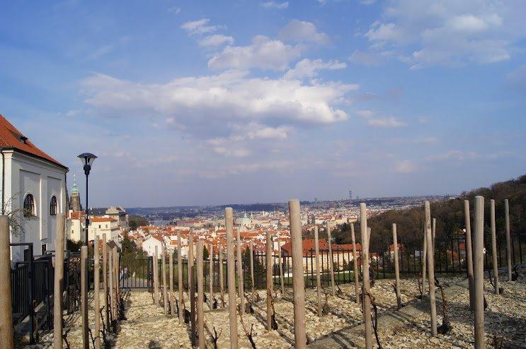 Prague Castle8