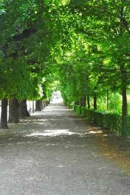 Palace Garden Path