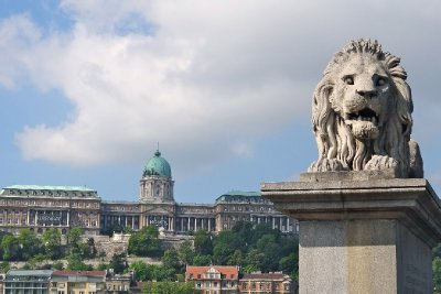 Lion Guarding the Bridge to Buda