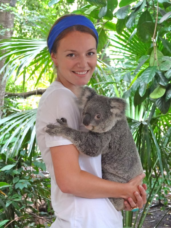 Koala Cuddler