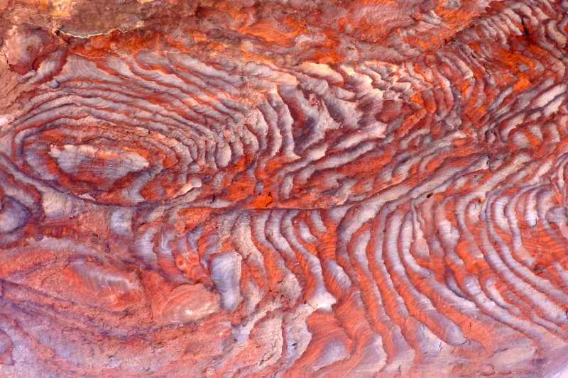 Swirl in Colorful Petra