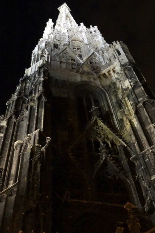 Night Time at the Gothic Cathedral