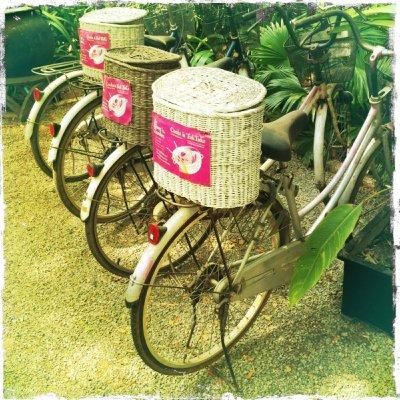 Bikes we rented