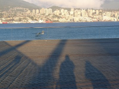 Long shadows for 4pm