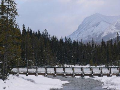 Soon the bridge will be redundant