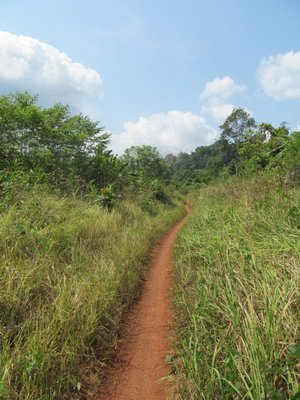 On the Trail to O'Malu Waterfall near Chi Phat