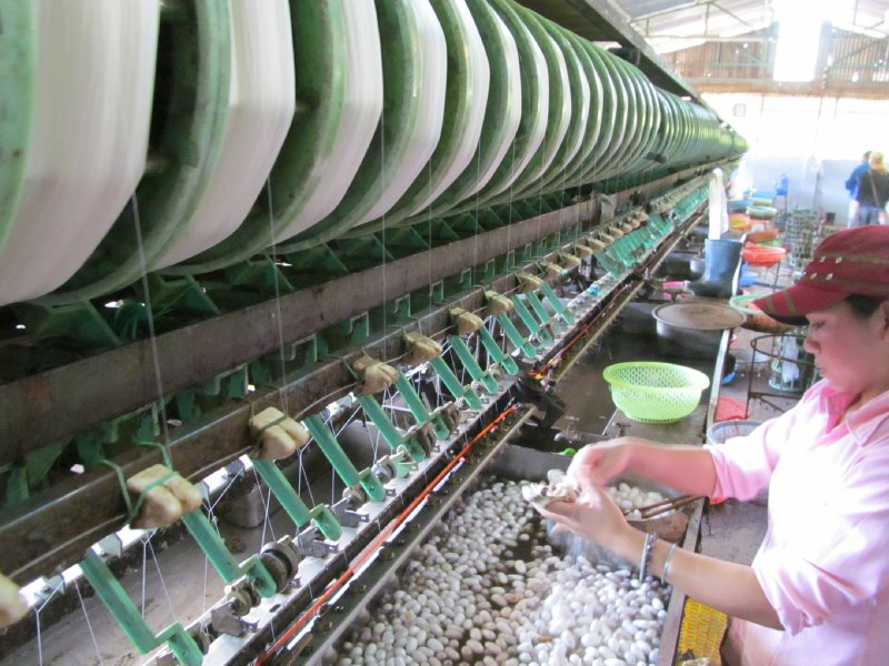Silk Factory