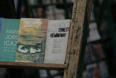 Cuba_SLR_Books2.jpg