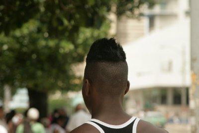 Cuba_SLR_Tuftops.jpg