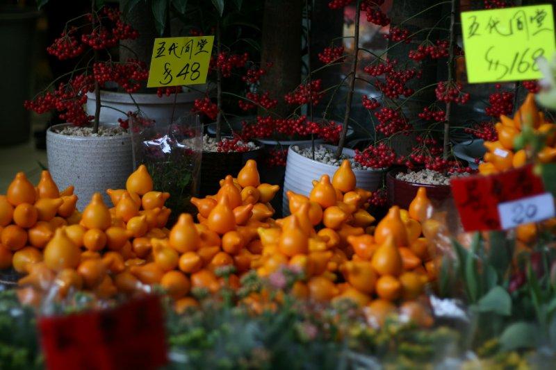 HK_slr_flowermarket1