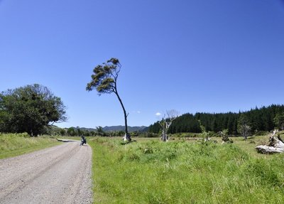 Bike on the Coromandel dirt road