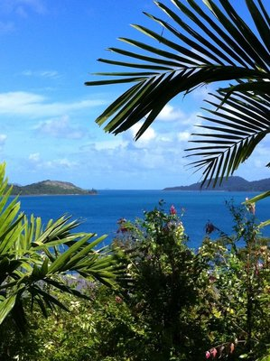View from breakfast table at Qualia
