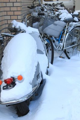 Snowed scooter