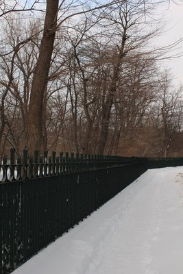 Botanical Gardens Fence 2