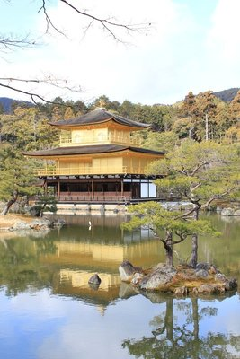 Golden Pavilion 5