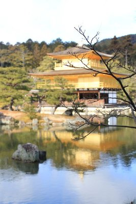 Golden Pavilion 6