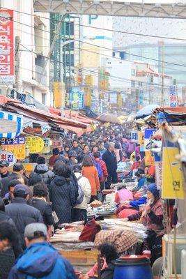 Busan fish market 4