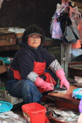 Busan fish market 3