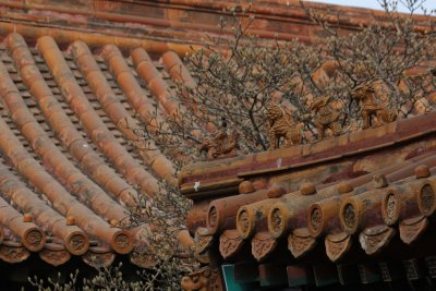 Forbidden city 130