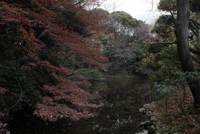 River - Yeyogi Park