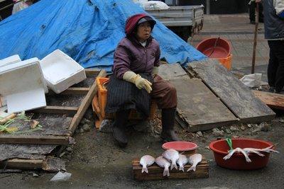 busan Fish market 7