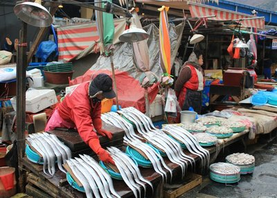 busan Fish market 5