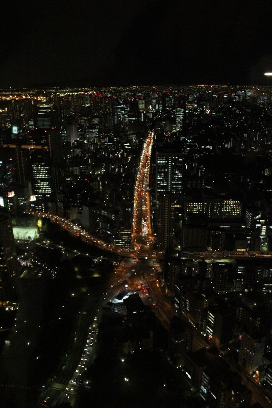 Tokyo Tower view 4