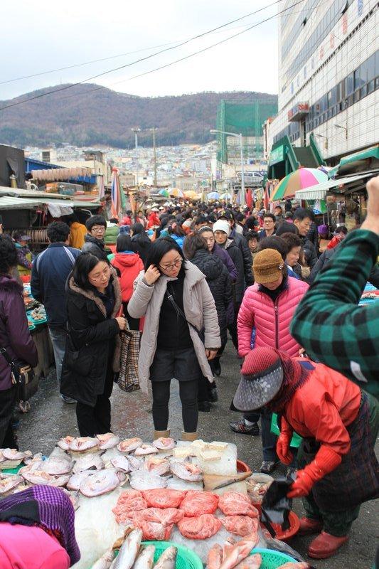 Busan fish market 6