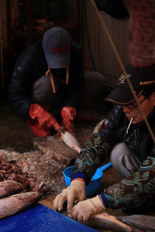 busan fish market, cleaning fish