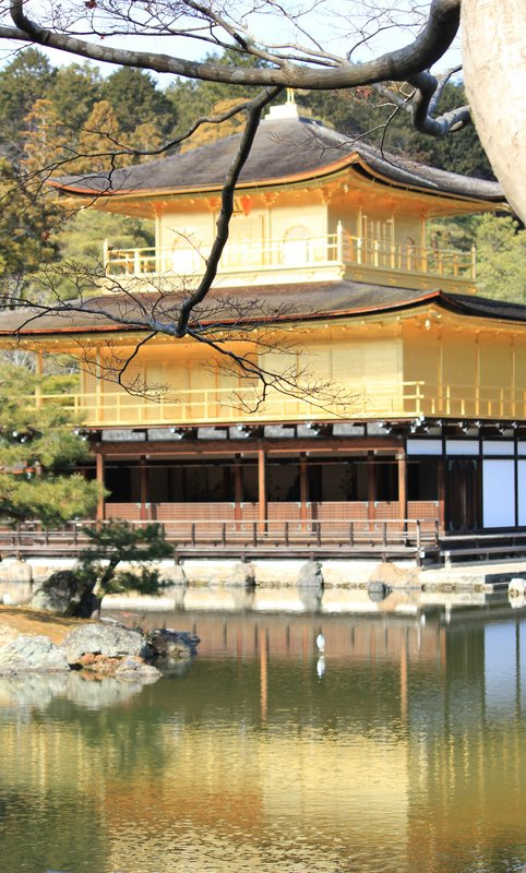 Golden Pavilion 9