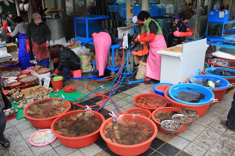 busan fish market 8