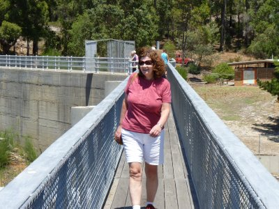 Lis on the bridge