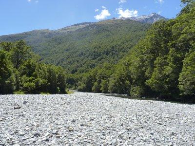 River Creek by Fantail Falls