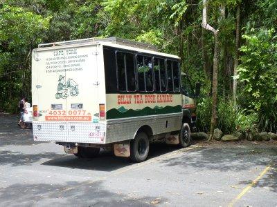 Daytour in the rainforest with Billy Tea Bush Safaris