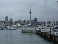 Westhaven harbour Auckland