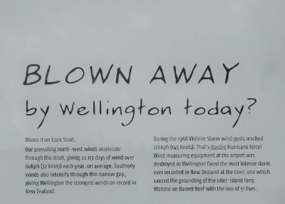 Windy Wellington Sign (1)