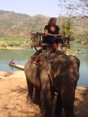 Elephant riding at the Mahout Lodge